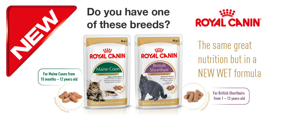 NEW Cat Wet Breed Food!