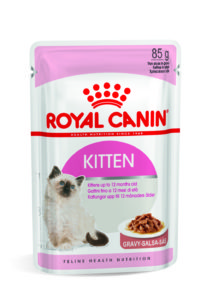 Kitten in gravy pouch
