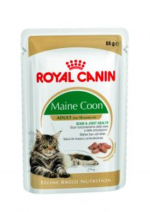 maine-coon-wet-pouch-packshot