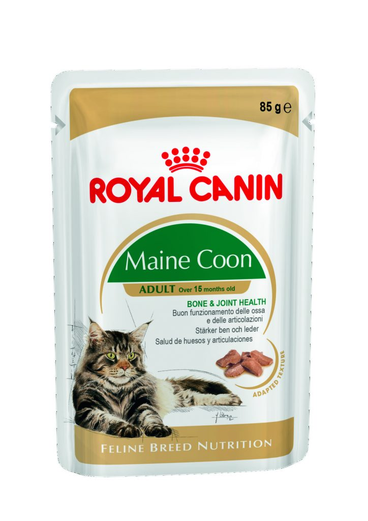 maine coon wet royal canin. Black Bedroom Furniture Sets. Home Design Ideas