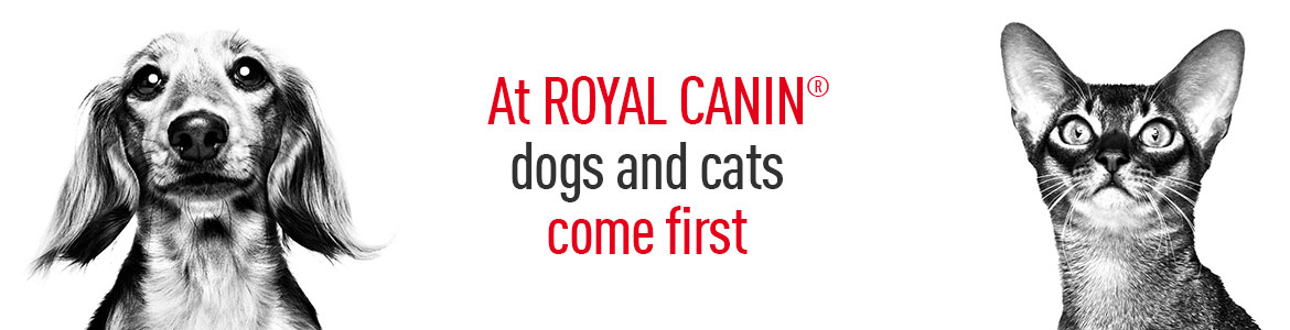 At ROYAL CANIN dogs and cats come first