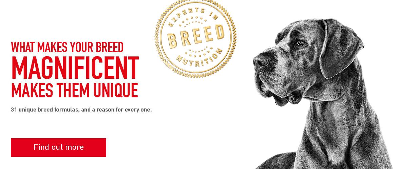 Royal Canin Dog Food Stockists