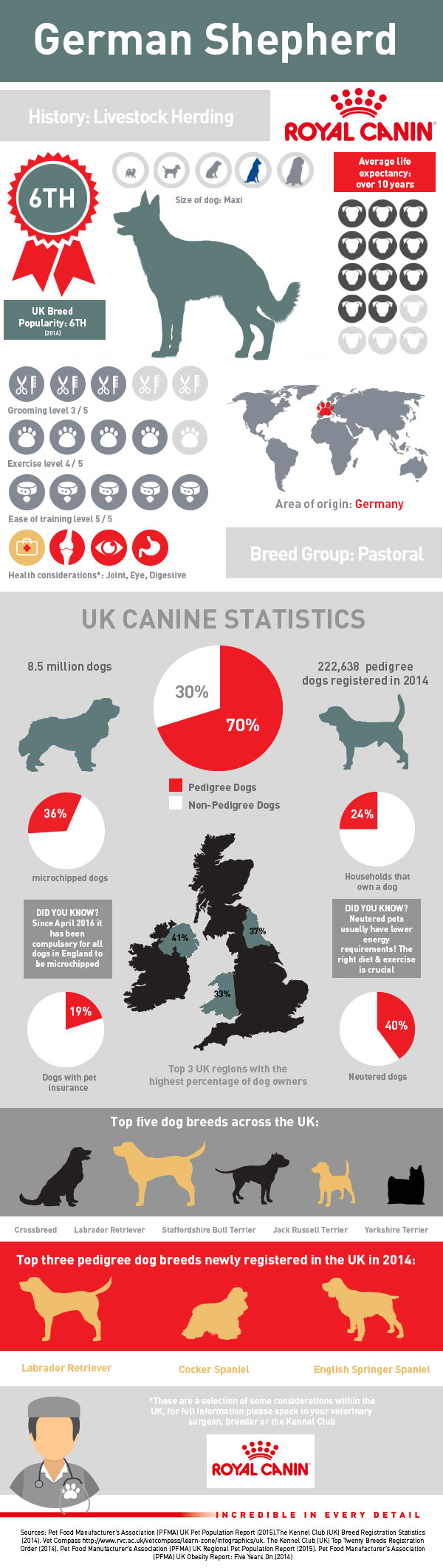 infographic-gsd