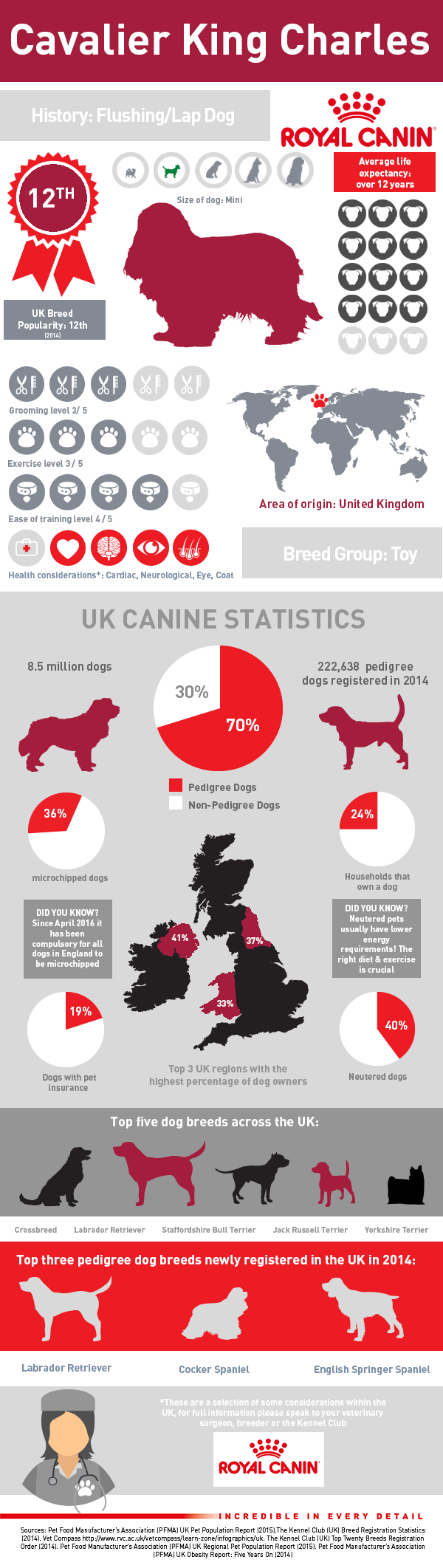infographic-cav