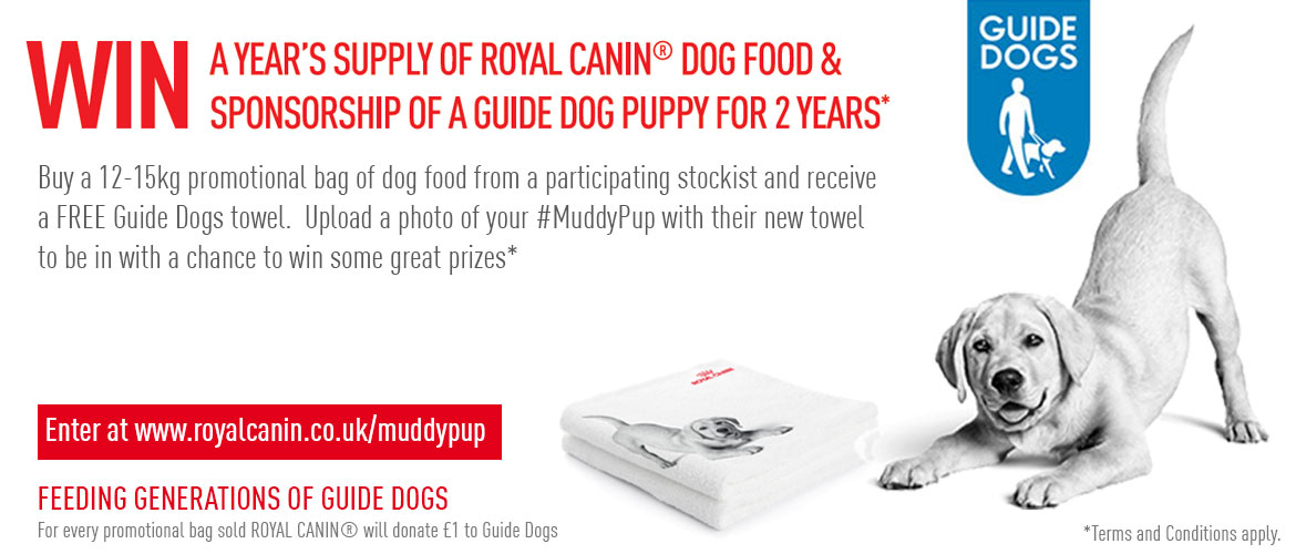 Win in our #MuddyPup Photo Competition