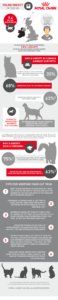 cat obesity infographic
