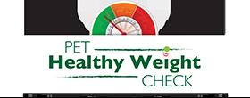 PHW check logo