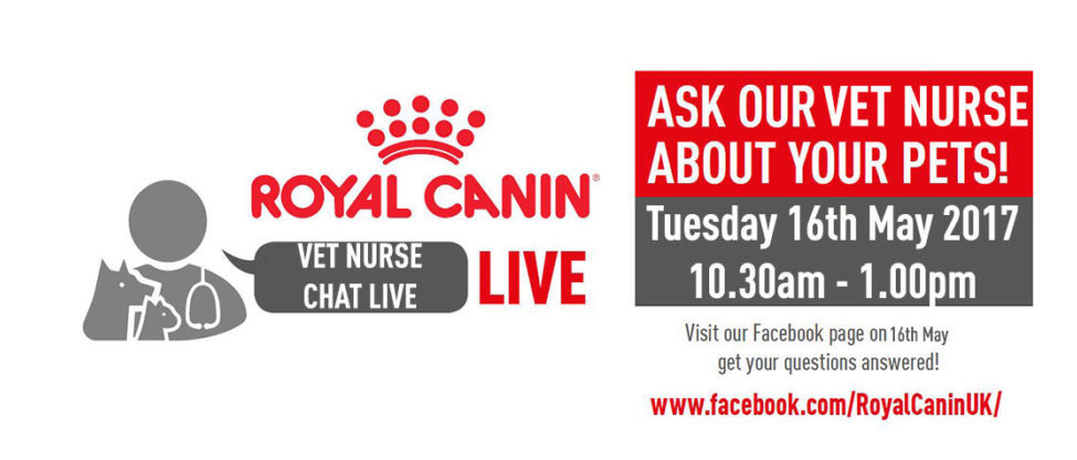 Vet Nurse Chat Live is back on May 16th, 10.30am -1pm