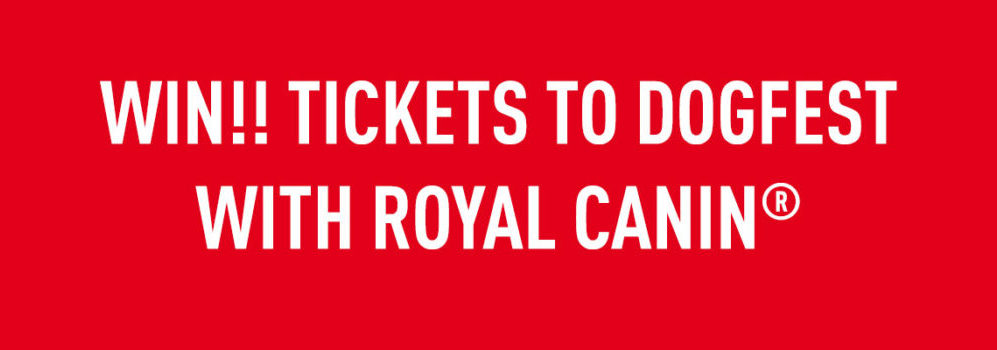 WIN Tickets to DogFest with ROYAL CANIN
