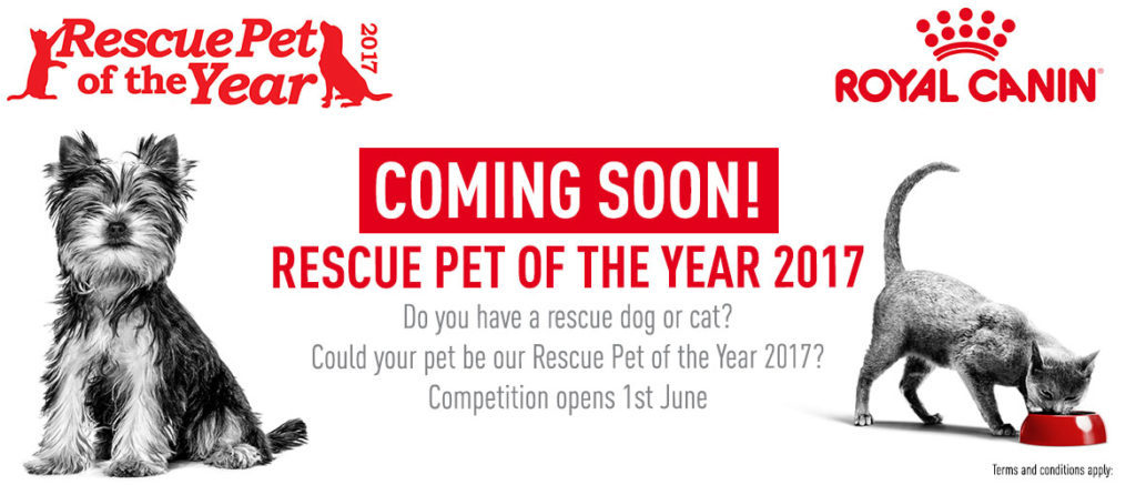ROYAL CANIN Rescue Pet of The Year 2017