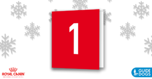 royal-canin-advent-calendar-day-1