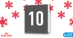 royal-canin-advent-calendar-day-10