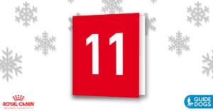 royal-canin-advent-calendar-day-11