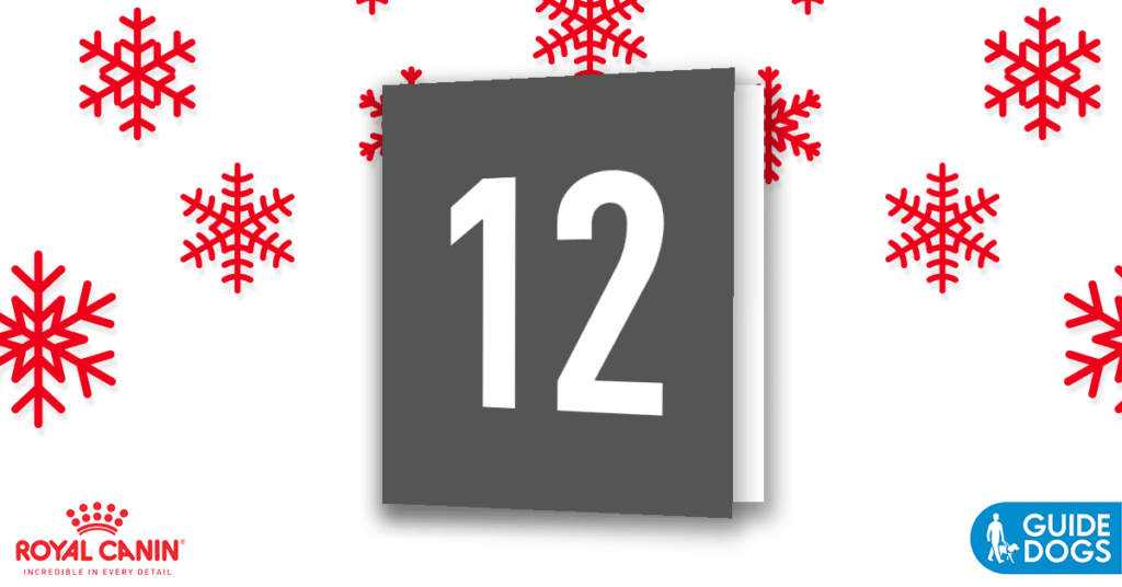 royal-canin-advent-calendar-day-12