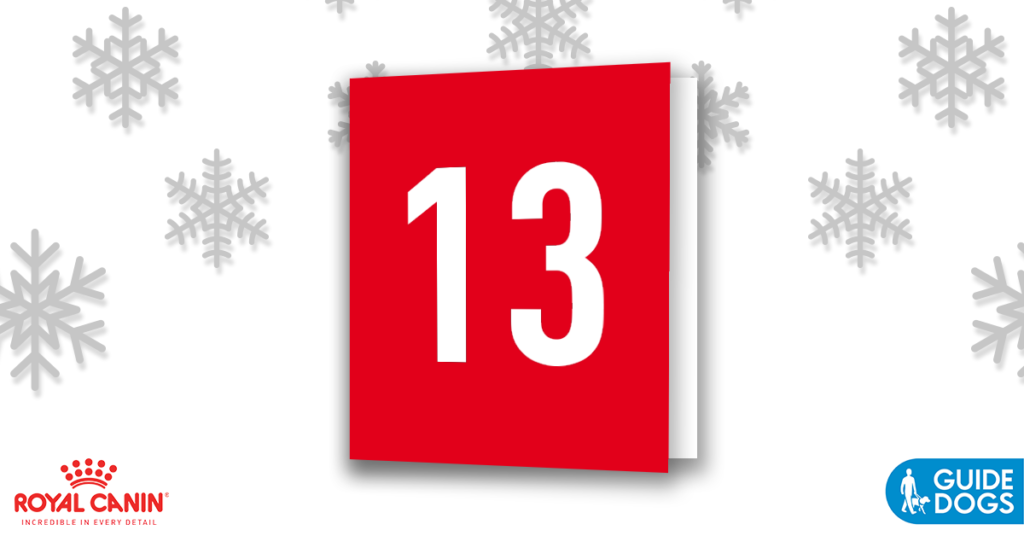 royal-canin-advent-calendar-day-13
