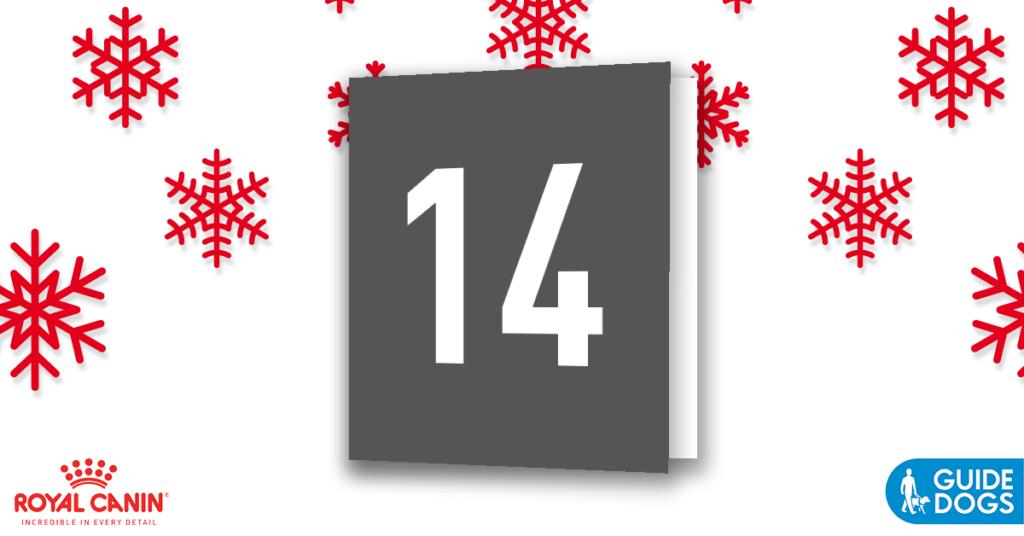 royal-canin-advent-calendar-day-14