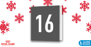 royal-canin-advent-calendar-day-16