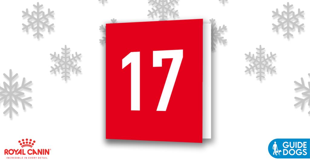 royal-canin-advent-calendar-day-17