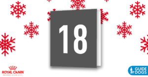 royal-canin-advent-calendar-day-18