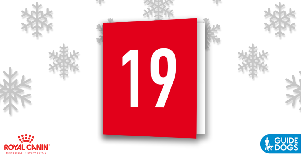 royal-canin-advent-calendar-day-19