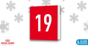 royal-canin-advent-calendar-day-19