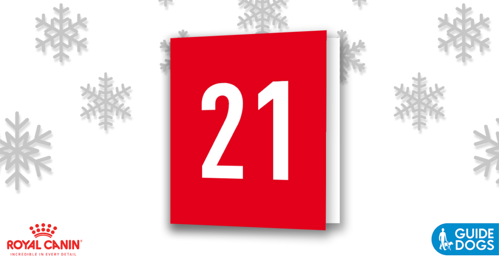 royal-canin-advent-calendar-day-21