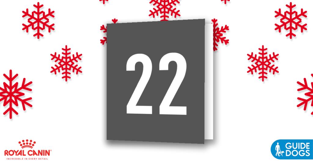 royal-canin-advent-calendar-day-22