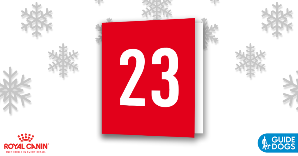 royal-canin-advent-calendar-day-23