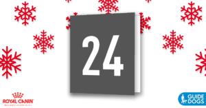 royal-canin-advent-calendar-day-24