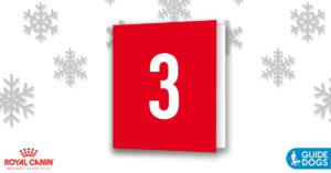 royal-canin-advent-calendar-day-3