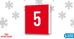 royal-canin-advent-calendar-day-5