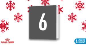 royal-canin-advent-calendar-day-6
