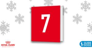 royal-canin-advent-calendar-day-7