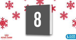 royal-canin-advent-calendar-day-8