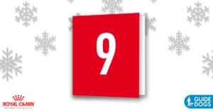 royal-canin-advent-calendar-day-9
