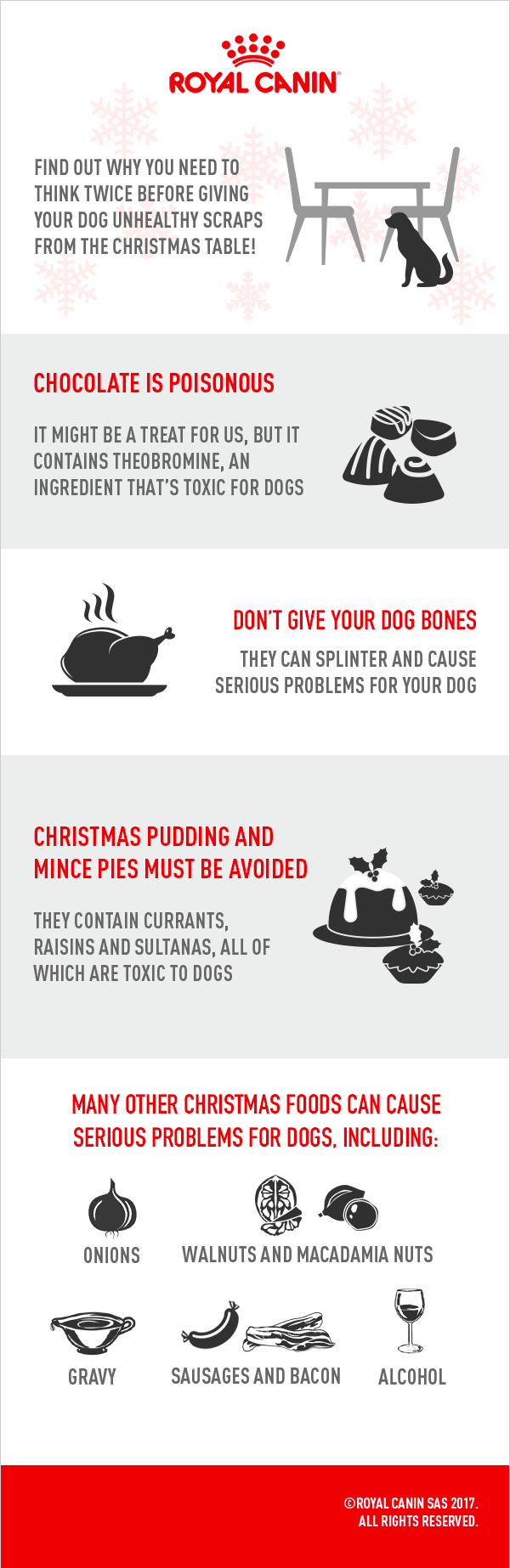 ROYAL-CANIN-Scraps-From-Table-Infographic