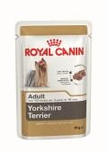 Yorkshire Terrier Wet