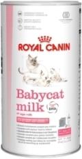 babycat milk royal canin. Black Bedroom Furniture Sets. Home Design Ideas