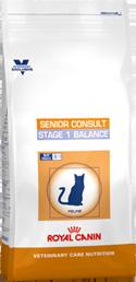 Senior Consult Stage 1 Balance