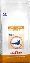 Senior Consult Stage 2
