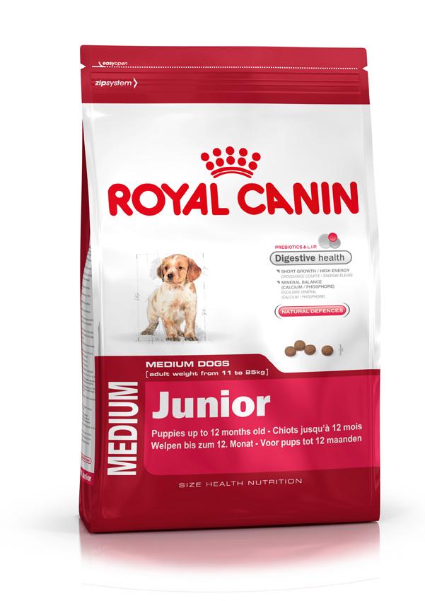 medium junior royal canin. Black Bedroom Furniture Sets. Home Design Ideas