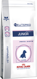 Neutered Junior Medium
