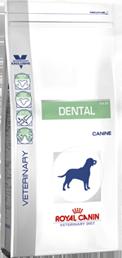 Dental Dry