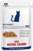 Neutered Adult Maintenance WET